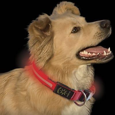nite-ize-nite-dawg-led-dog-collar